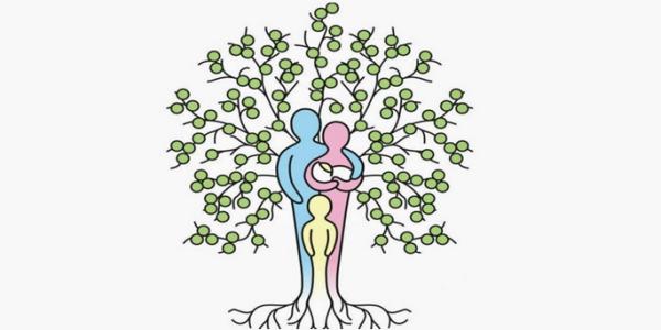 Crear álbum familiar con My Family Tree | Descargar software